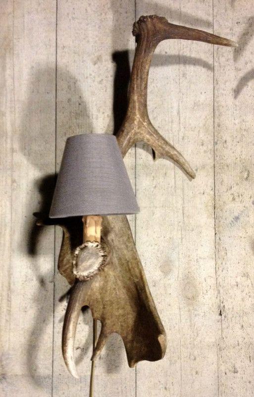 Wandlamp gemaakt van damhert afwerpstang geweilamp for Lamp gewei