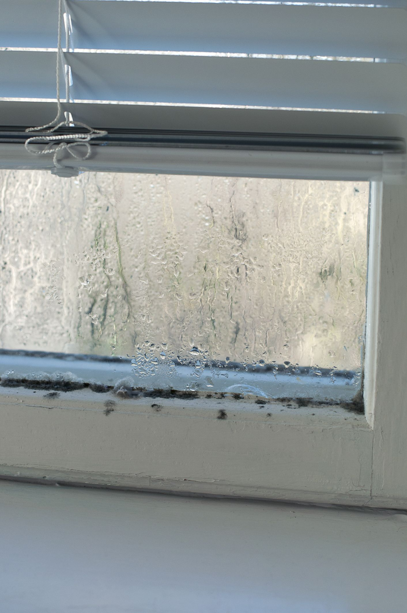 Do You Have Condensation On The Inside Of Your Windows Here S What Causes The Problem And How To Correct It Before De Windows Window Cleaning Tips Diy Molding
