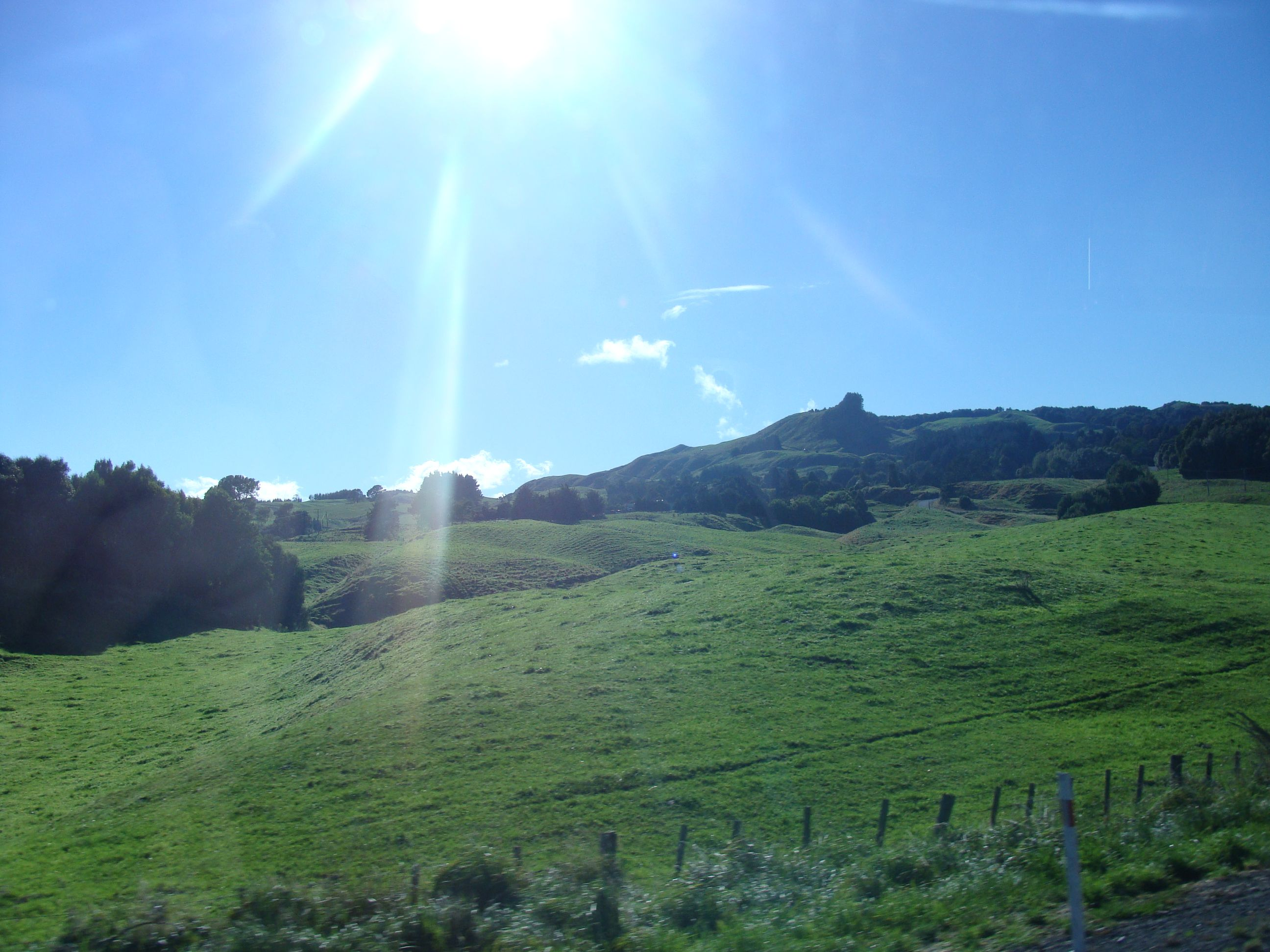 Arcadia University- University of Otago | Go Overseas