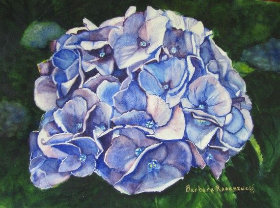 #Blue #Hydrangea Watercolor #Painting #Gift Ideas #Home #Decor #Spring #Flower #Art . This #painting is inspired by one of the most beautiful flowers in my #garden , the blue hydrangea. In this fine art reproduction of my original watercolor painting, I loved capturing the intricate details of every petal. Nature's designs are amazing! Copyright © 2010 by Barbara Rosenzweig, matted 11x14 art print of original $34.00 Free Shipping US CA - available in other sizes Etsy.