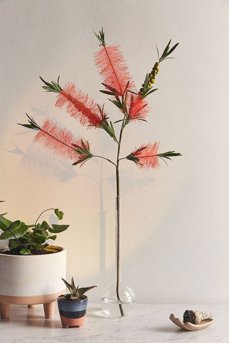 Real Anthuriums Cost 20 A Stem So May We Suggest A Faux Anthurium Faux Flowers Faux Plants Bottle Brush