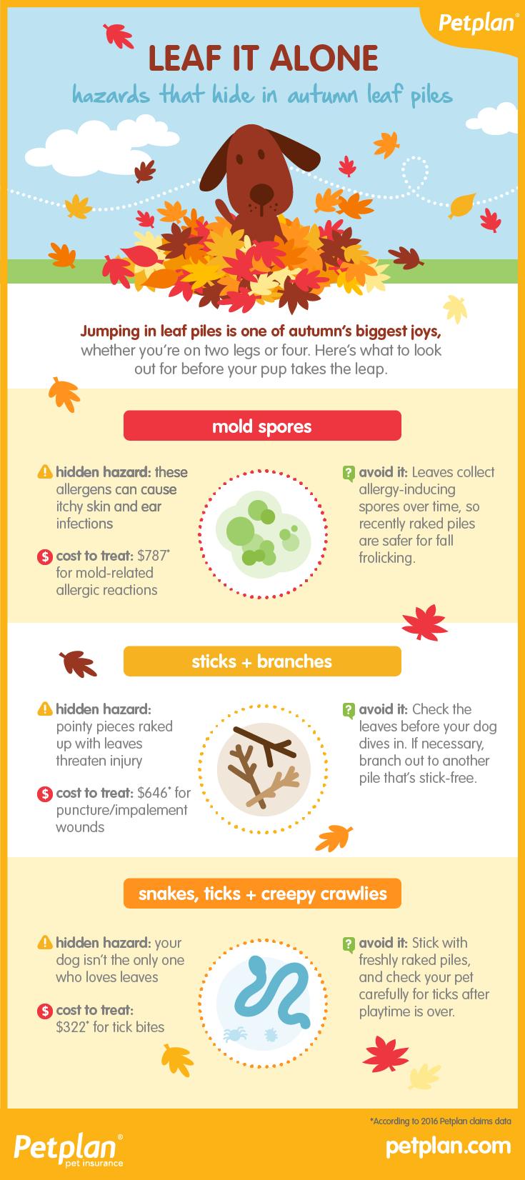 Hidden Holiday Health Hazards recommendations