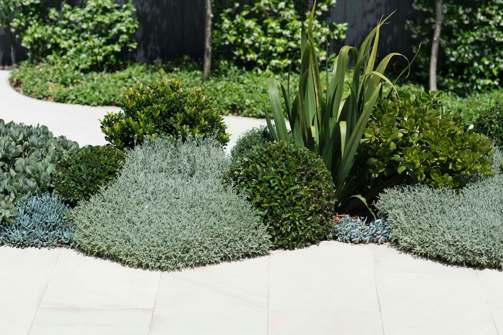 Randwick Landscape Design By Secret Gardens Sydney Landscape