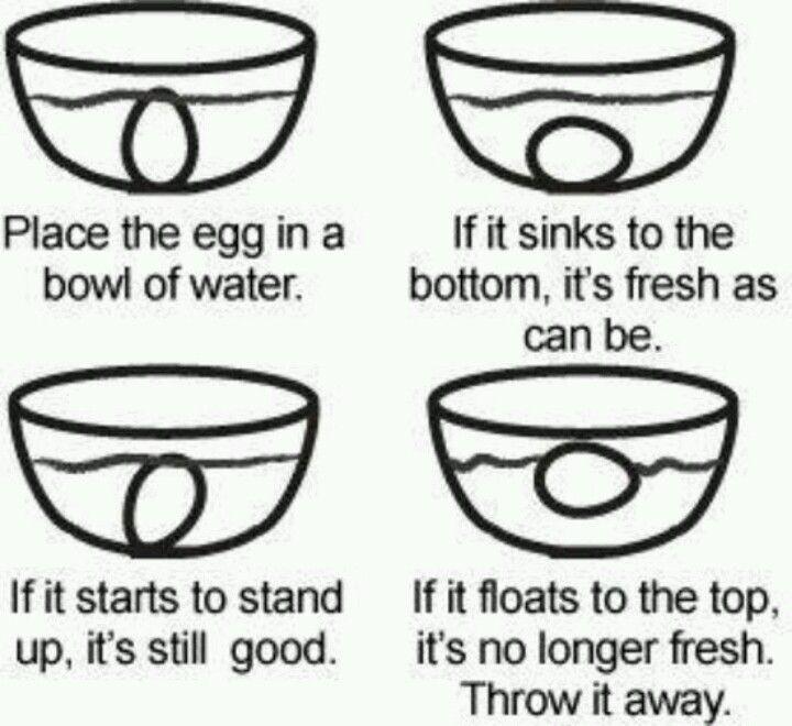 egg freshness chart