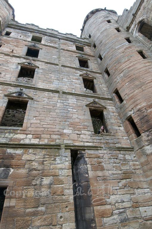 Linlithgow Palace (3)