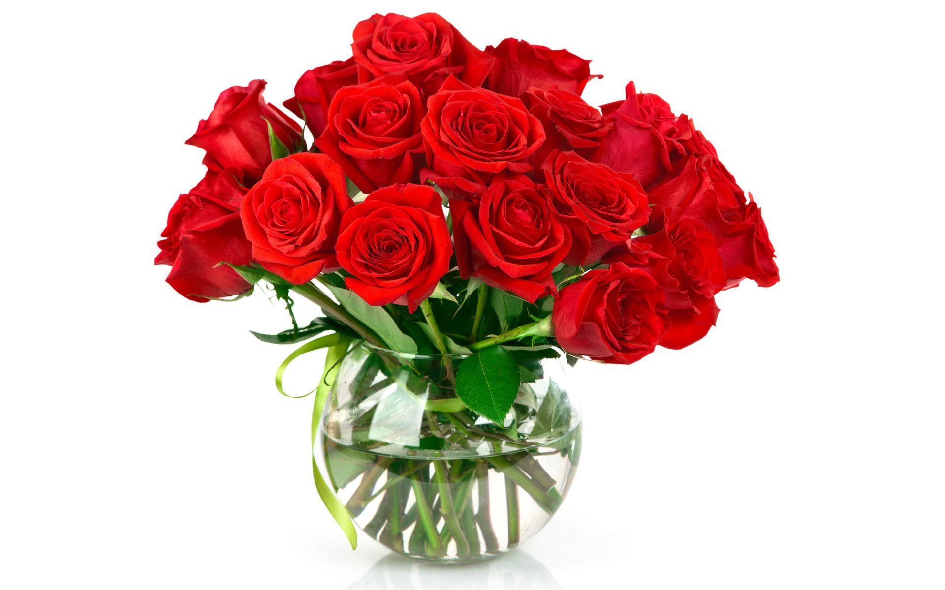Ảnh Lọ Hoa Hồng Đẹp Hoa, Hoa hồng đẹp, Hoa hồng