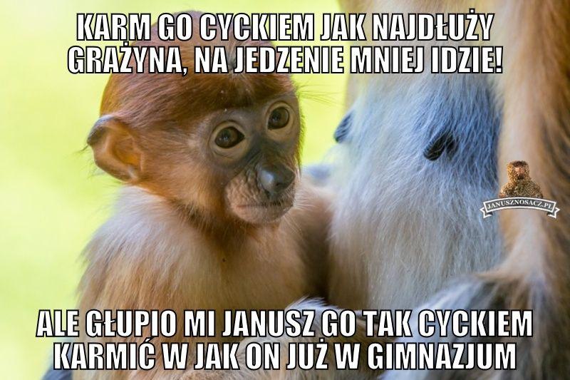 Janusz Nosacz Najlepsze Memy O Januszu Nosacz Grażynie Nosacz
