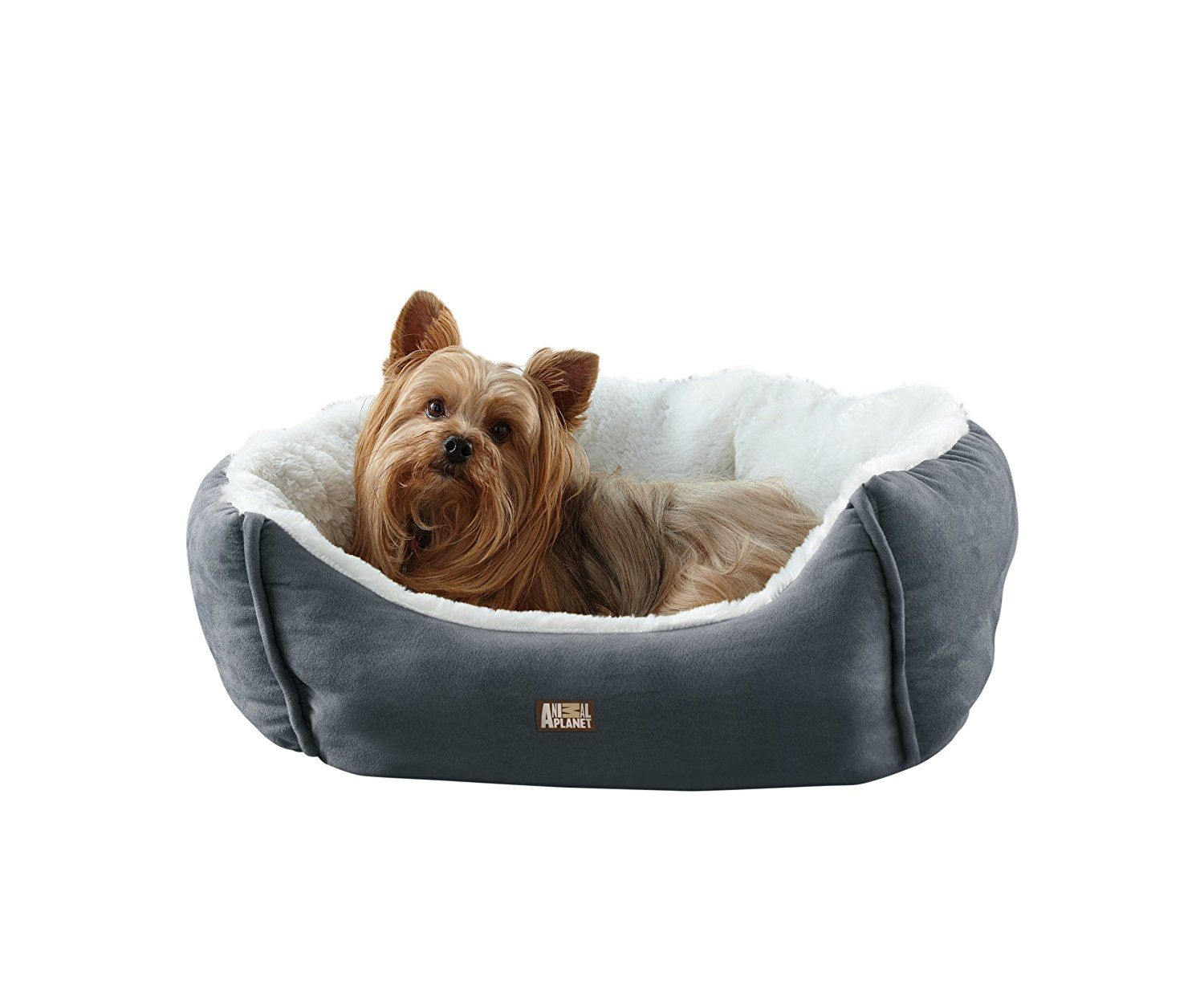 Animal Planet Micro Suede Pet Bed Blue Read More Reviews Of The Product By Visiting The Link On The Image This Is An A Animal Planet Dog Pet Beds Pet Bed
