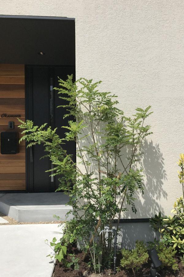 無垢の木 アイアンの黒 素材感を楽しむ家 キノハウスの写真集 エクステリア 玄関 玄関アプローチ モダン
