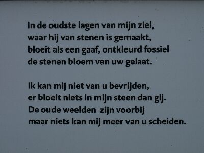 Gedicht Van M Vasalis W Is For Wonderful Words Poems