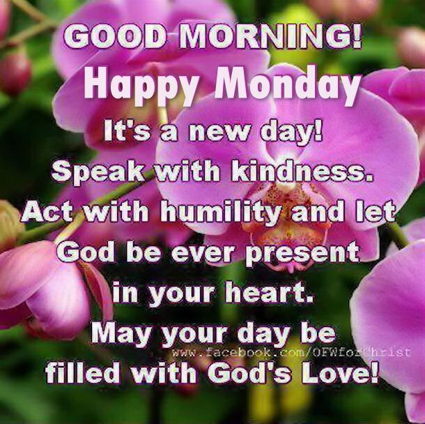 Good Morning Happy Monday Monday Good Morning Monday Quotes Good