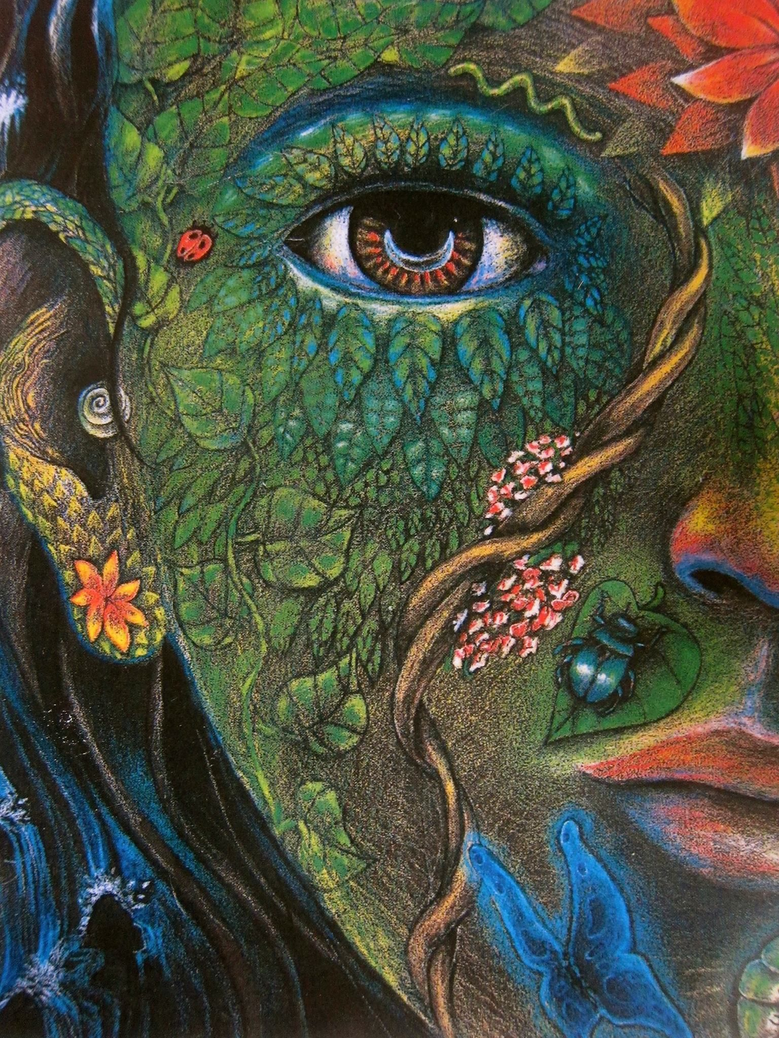 Pin by Bahs Bahsbahs on Shaman art in 2019 | Art, Psychedelic art