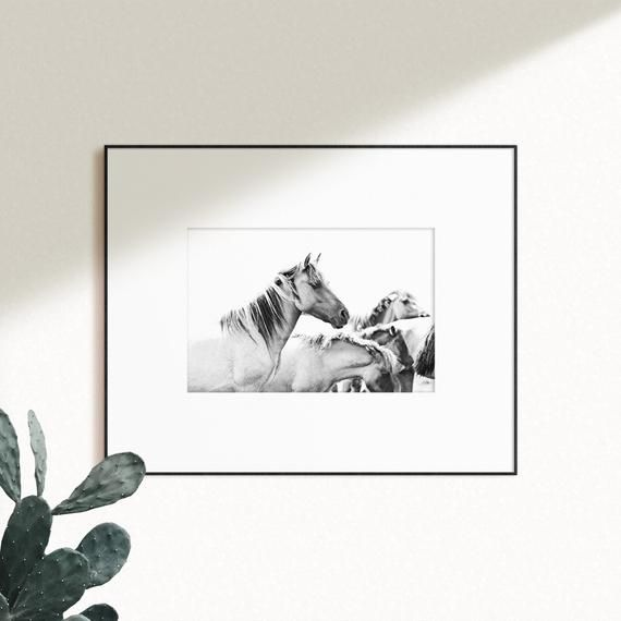 Photo of Running  Horses Printable Horses Wall Decor Black and White Animal Photography Digital Printable Wal