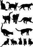 Cats -