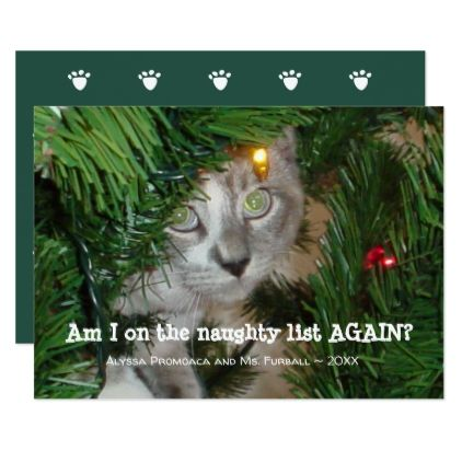 Cute Cat Photo Christmas Card Add Your Pet Photo Invitations
