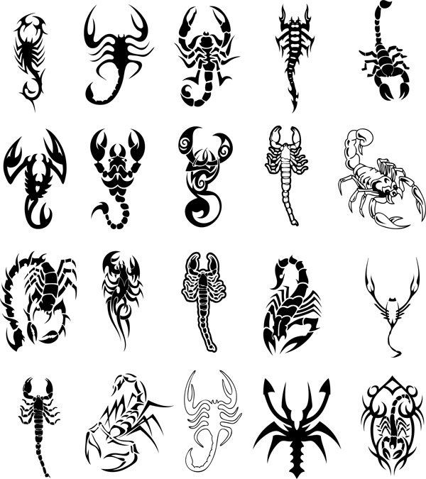 Cool Black Scorpio Zodiac Sign Tattoo Flash Scorpio Tattoo Scorpion Tattoo Tattoos