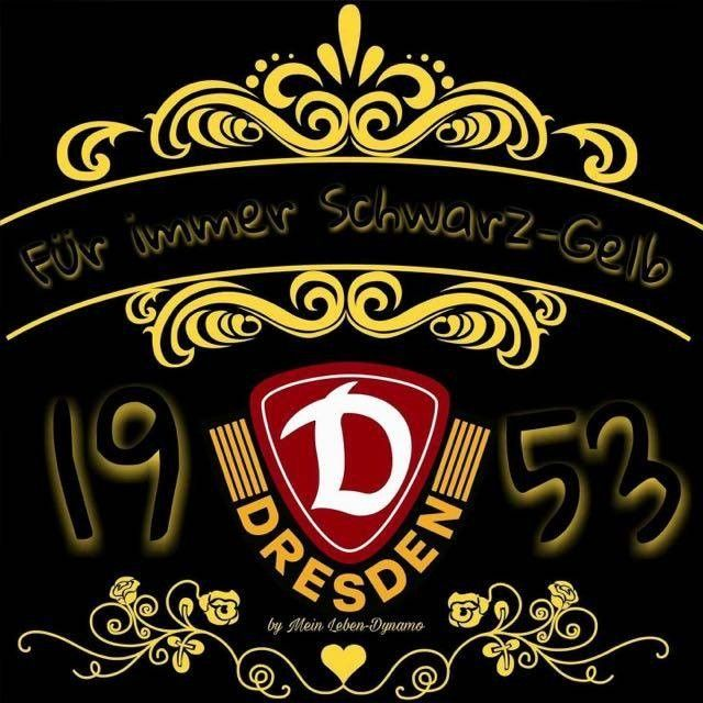 Neues Von Dynamo Dresden