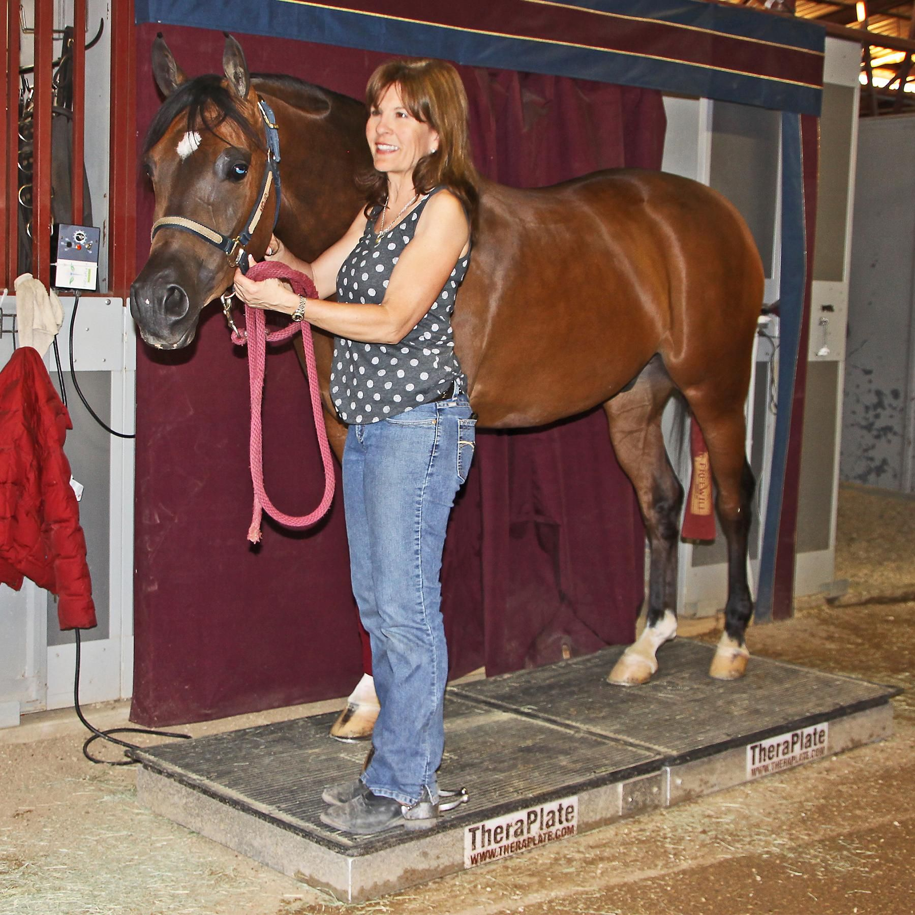 Theraplate Equine In Theraplate Equine Massage Equines Horse Care
