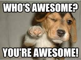 Image Result For Thank You Meme Funny Memes For Him Funny Love