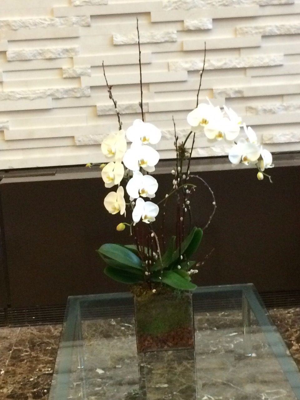 Lovely Orchid The Best Elegant And Stylish Decoration For Offices Hotels Weekly Flowers Office Lobby Orchids Arrangement Florist