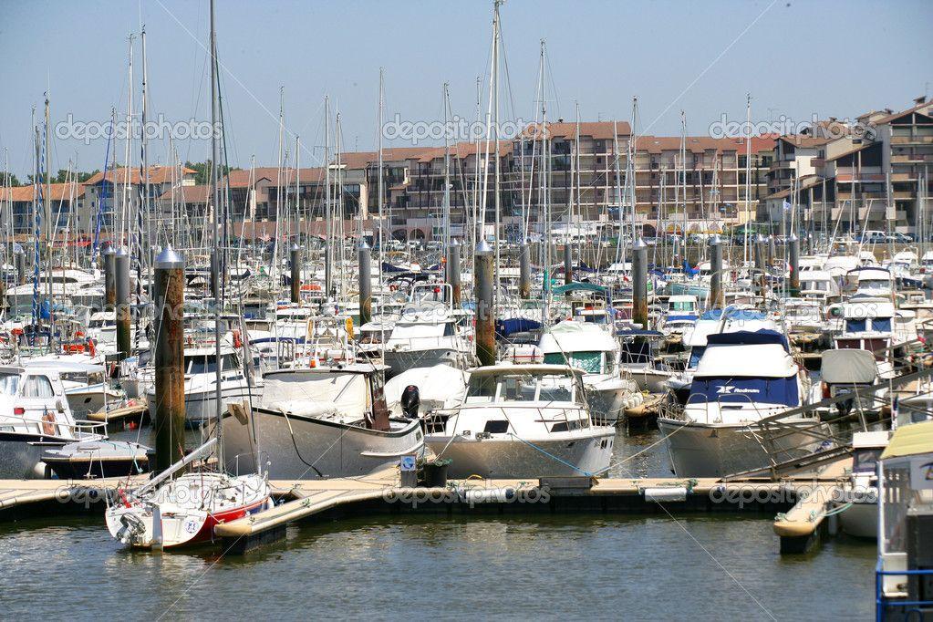 Busy marina Busy marina Photo