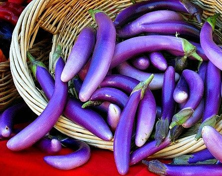 Purple Japanese Eggplant, 25 seeds, slender tender Asian heirloom, delicate flavor, vivid purple fruits