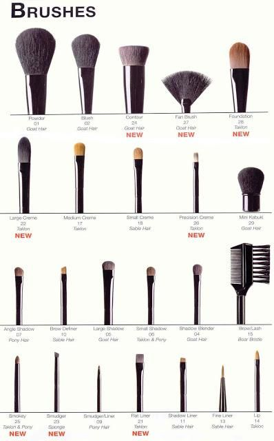 What Makeup Brushes Are For What Beauty Darling Makeup Charts How To Clean Makeup Brushes Makeup Brushes Guide