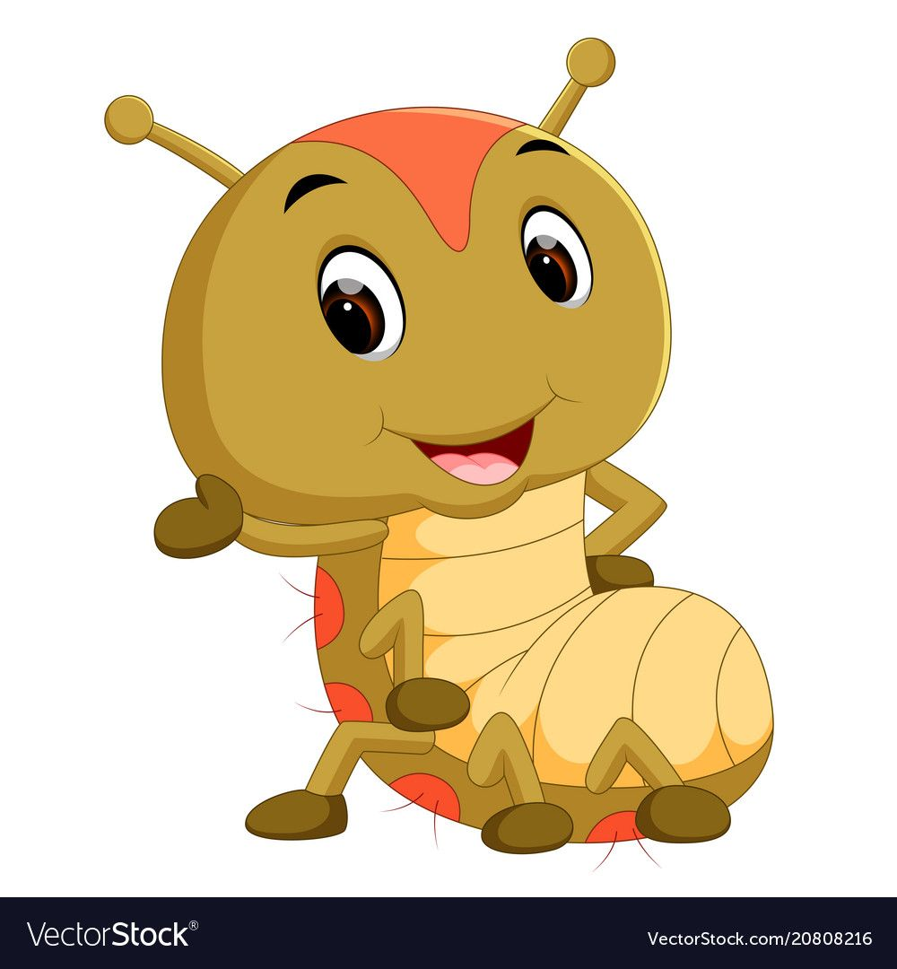 Pin By Mari Robu On Insecte Insects Cartoons Vector Animal Life Cycles Cute Baby Animals