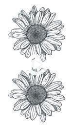 Photo of Vintage small sunflower tattoo #slight #sunflower # – Vintage kleine Sonnenb Sunflower tattoo