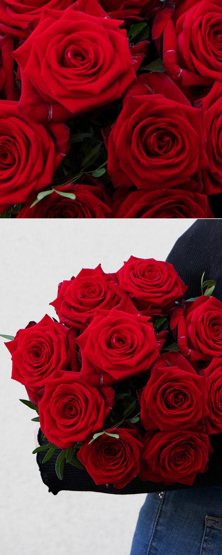 Blumenstrauß Rote Rosen für Sie | Rote rosen, Rosen, Roter