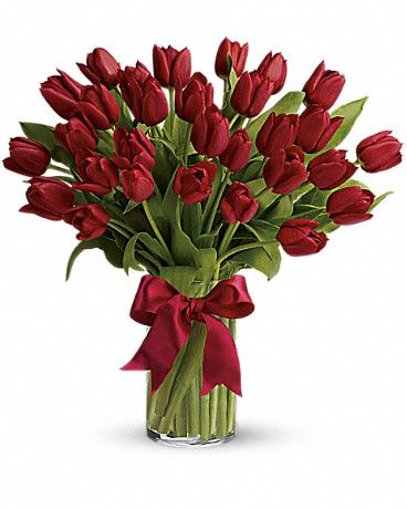 Radiantly Red Tulips Bouquet Tulips Arrangement Amazing Flowers Red Tulips