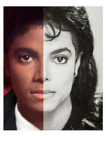 Image result for michael jackson comparison