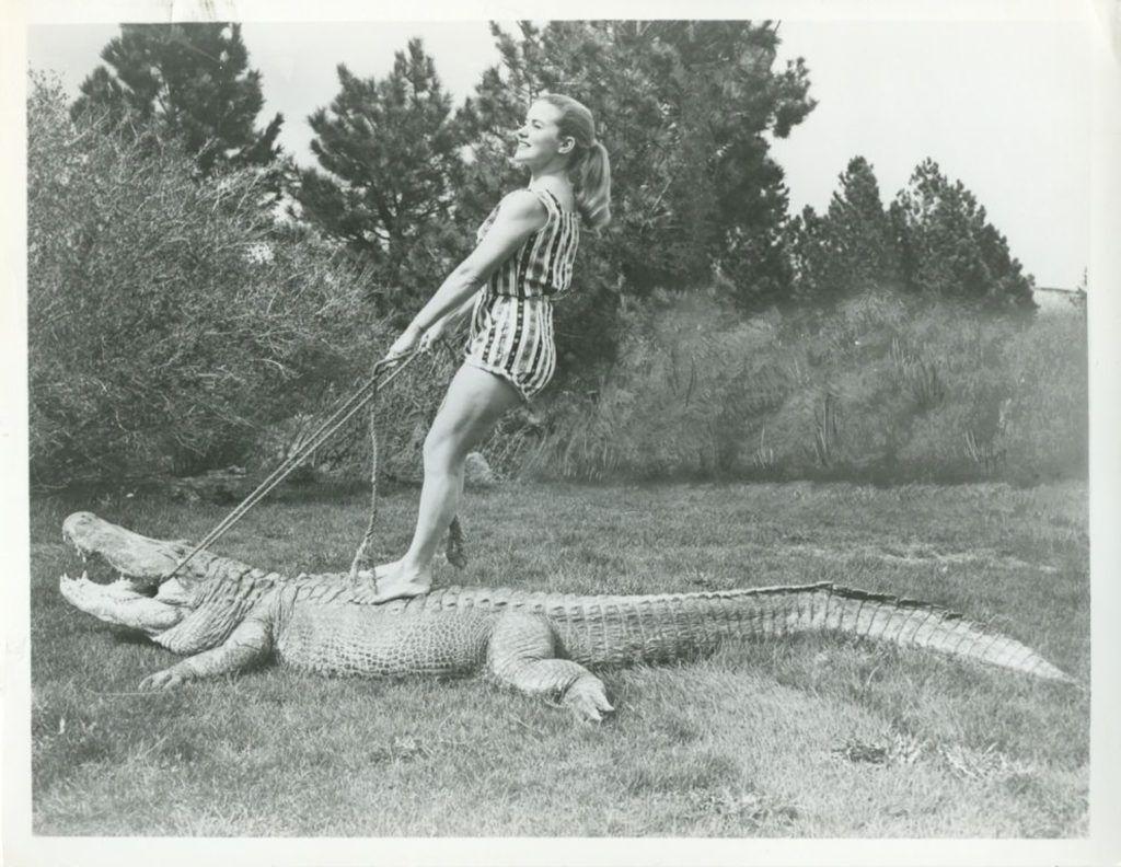 9309088b8c080da1ed3495e3f42944c3 - How Long Does Reptile Gardens Take