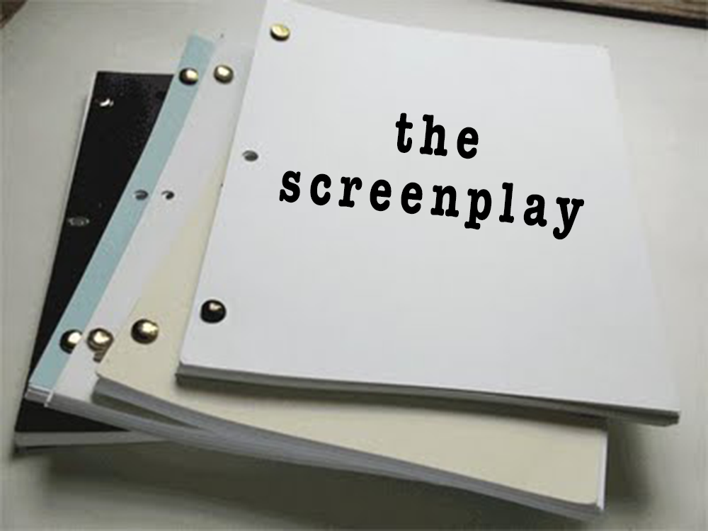Screenwriting Books  What Little I Learned From The