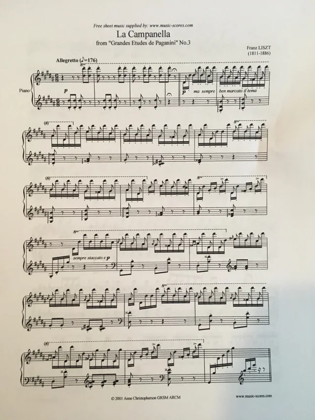 A Combination Of Determination Hard Work And Virtuosity Is What It Takes To Play This Piece Paginini Liszt Etude No 6 Performed Work Hard Music Theory Liszt