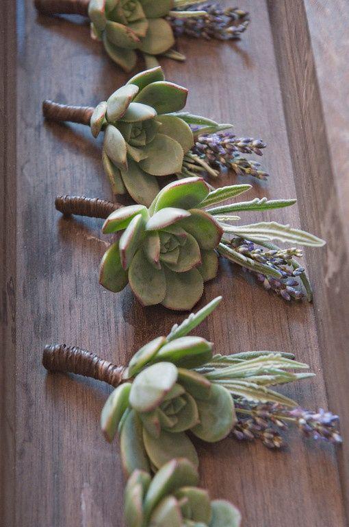 Succulent Boutonniere floral photography via www.theweaverhouse.com, florals by www.jldesignsandevents.com