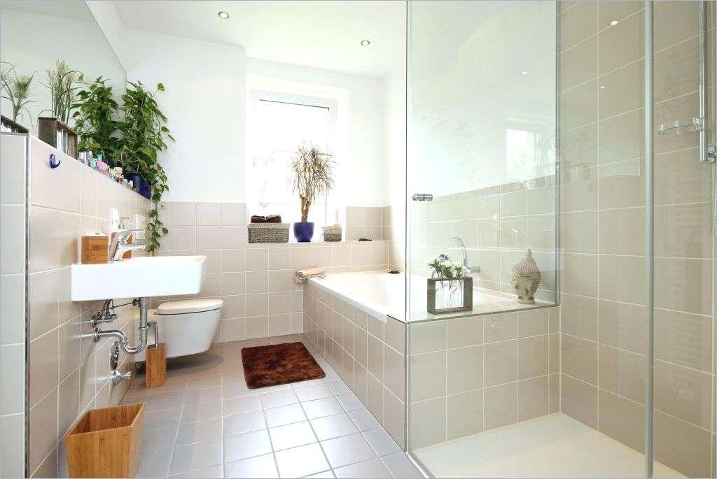 Was Kostet Ein Badezimmer Zu Renovieren Bad Barrierefrei Umbauen Elegant Einzigartig Badewanne In Dusche Wa Badezimmer Badezimmer Renovieren Renovierungsideen