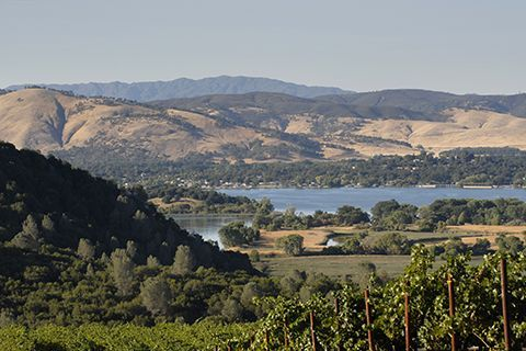 Wine Enthisiast Magazine names 2013 U.S. Wine Region of the Year: Paso Robles. This California region has reinvigorated itself with new blood, creativity and rapidly improving wines.