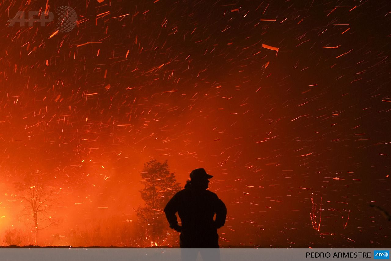 Spain Cualedro A Man Looks On At The Site Of A Wildfire In Cualedro Near Ourense On August 24 2013 Afp Photo Pedro Armes Photo Pictures Around The Worlds