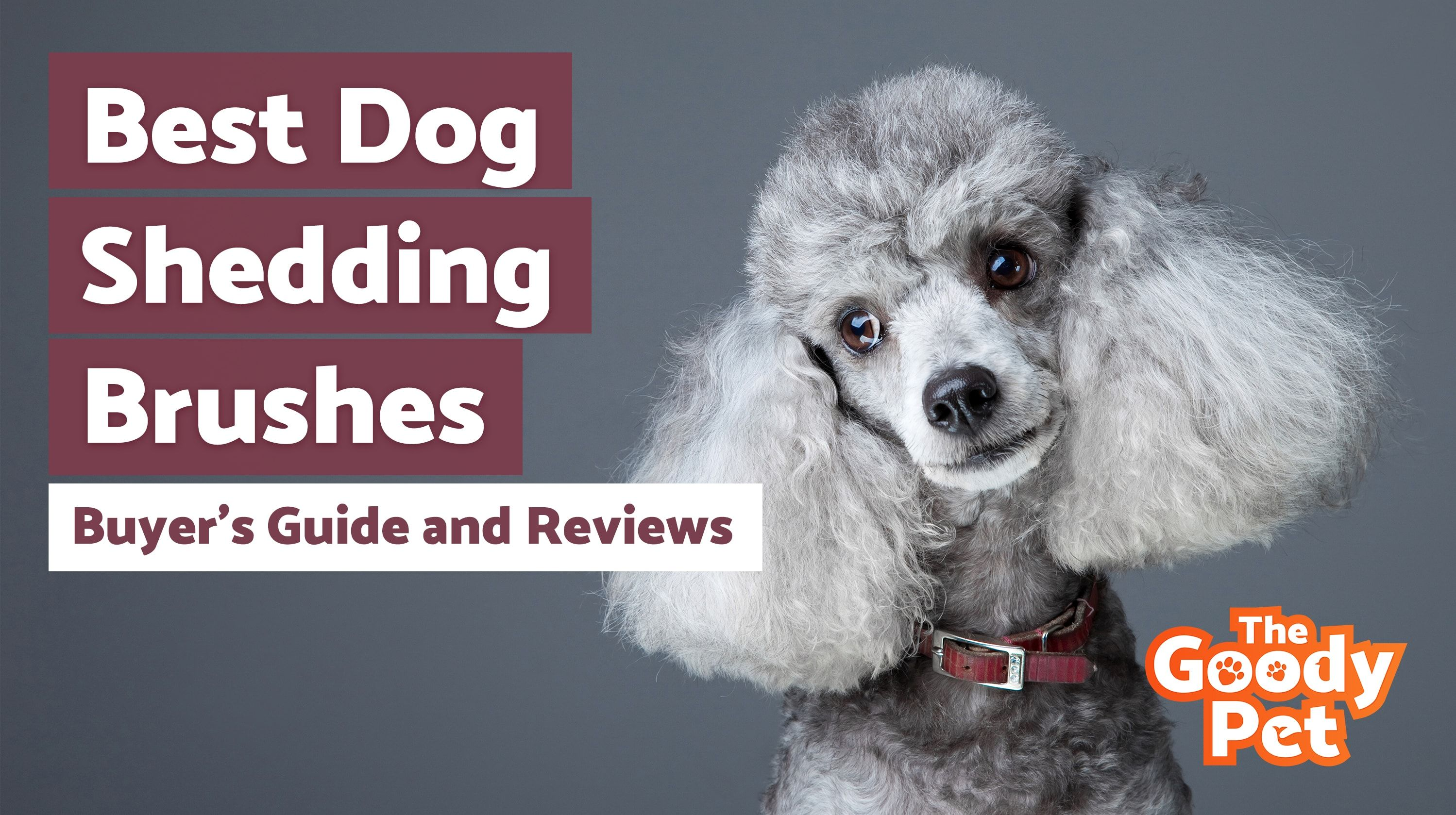 A Dog Deshedding Brush Is A Tool That Every Dog Owner Should Own Unless They Have A Poodle Or Another Dog That Doesn T Shed Https Dogs Deshedding Best Dogs