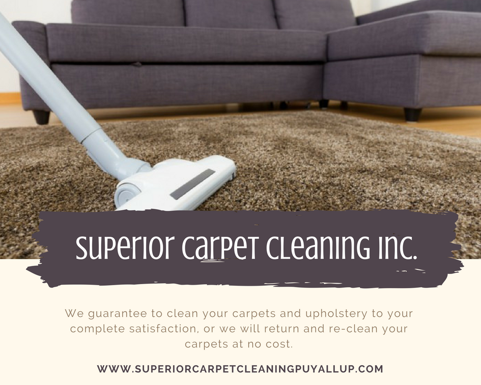 services offered carpet steam cleaning upholstery cleaning air duct rh pinterest com