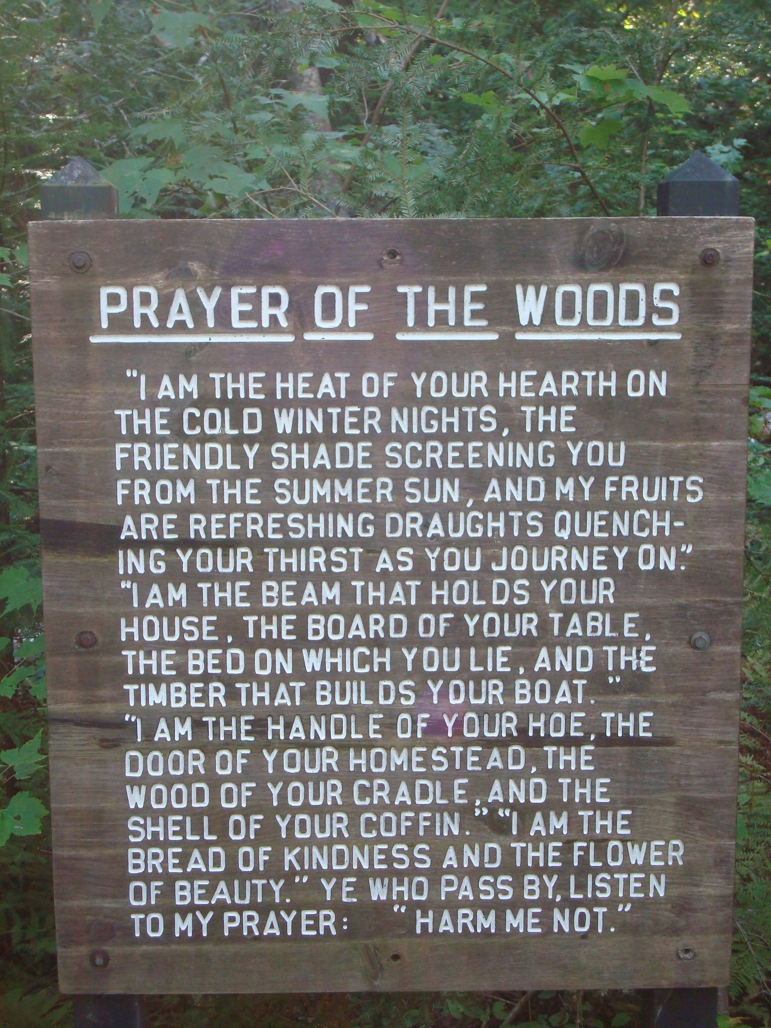 Prayer of the woods   pray it! | Mitten State | Michigan travel