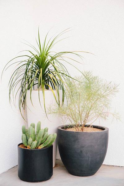 Un Precioso Patio Para Disfrutar Con Amigos Large Outdoor Planters Patio Plants Patio Makeover