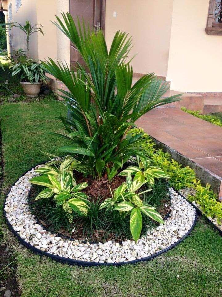 Ideas Para Jardines Pequea Os Con Piedra Jardines Tropicales Jardines Diseno De Jardin