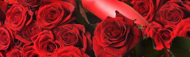Desktop Nexus Wallpapers With Love Rose Flower Wallpaper Rose Flower Images