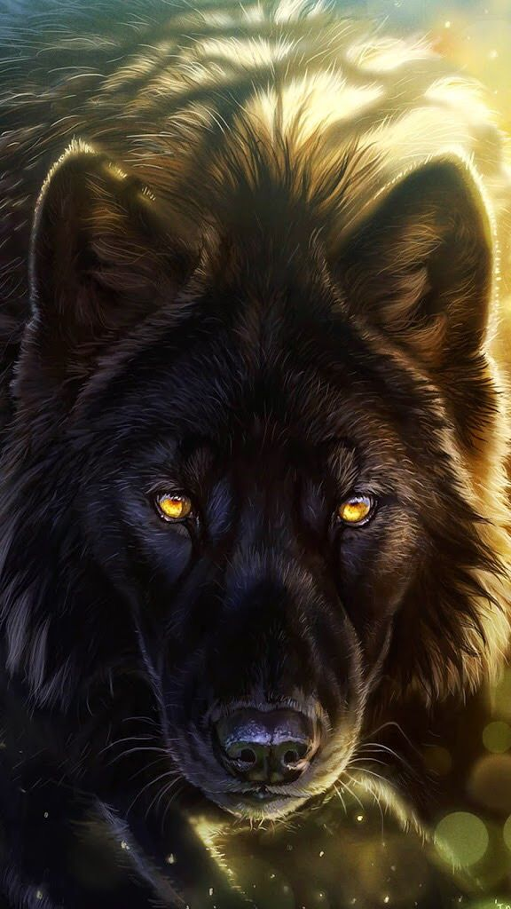 Photo of Black wolf with yellow eyes