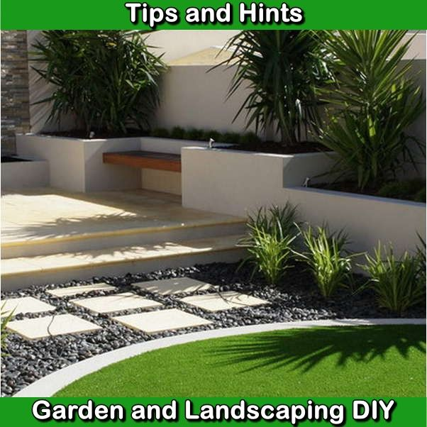 How To Get A Nice Lawn Mycoffeepot Org