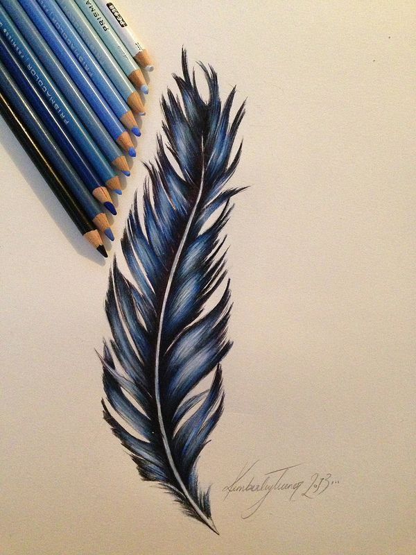 Feather design, prismacolor pencils