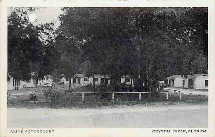 vintage motor courts | ... FL 1940s Roadside View Akins Motor Court Vintage Postcard | eBay