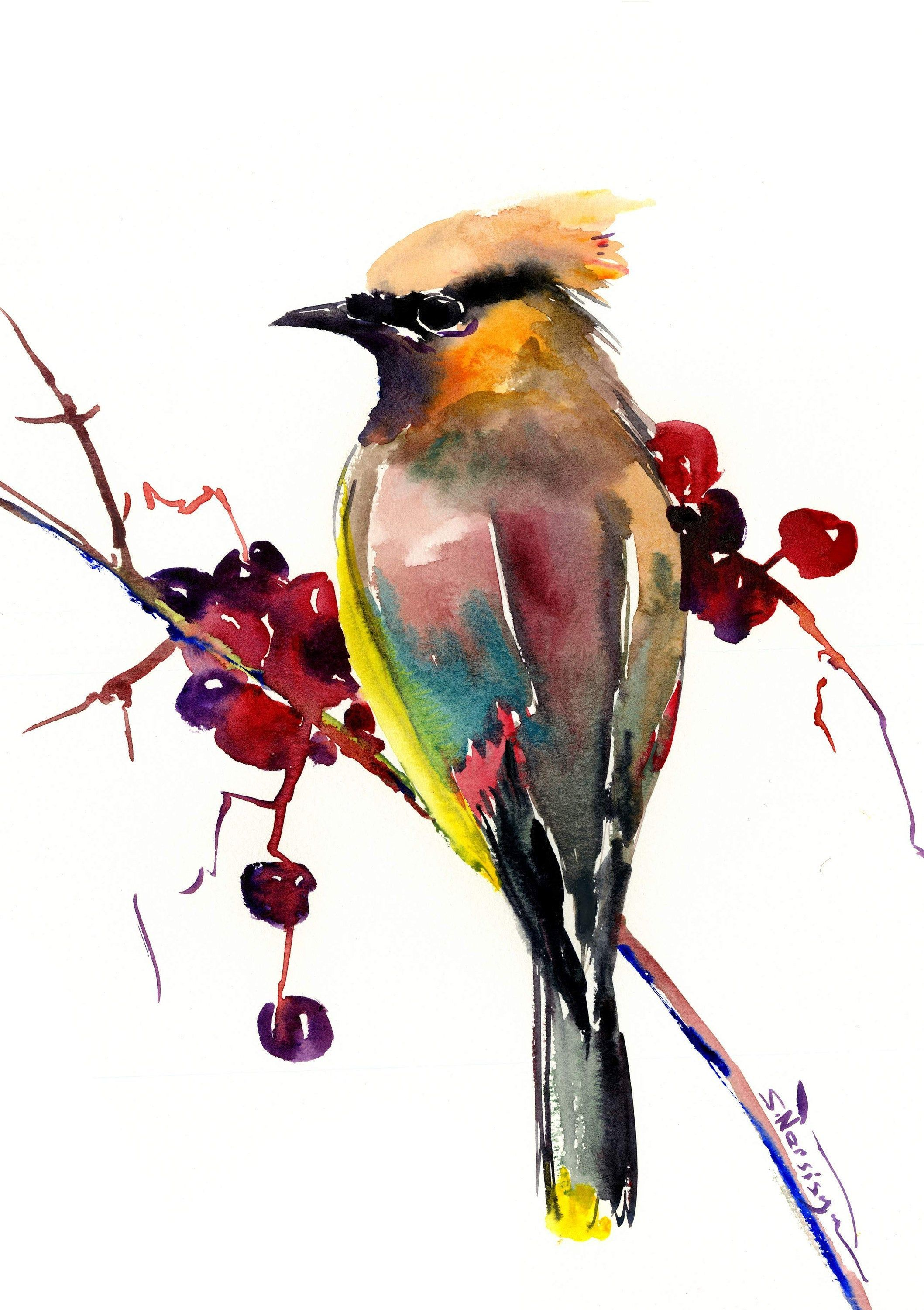 Waxwing Bird Art Original Watercolor Painting 12 X 9 In